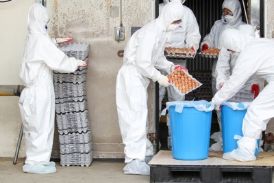 식품 및 의약외품 분야 집단소송제 발의 환영한다.