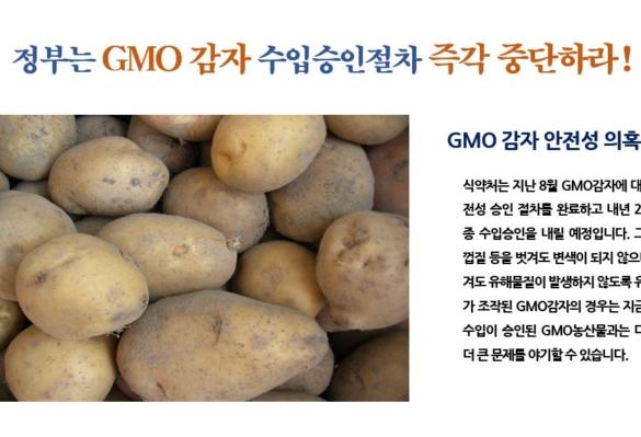 [2018-48호] 정부는 GMO 감자 수입승인절차 즉각 중단하라!