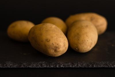 소비자 선택권 없는 GMO감자 수입승인 반대한다!