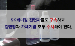 [논평] SK케미칼 관련자들도 구속하고  김앤장과 가해기업 모두 수사해야 한다.