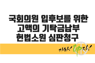 [헌법소원] 국회의원 입후보를 위한 고액의 기탁금납부에  대한 헌법소원 심판청구