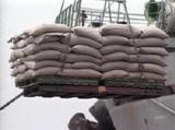 정부는 쌀 재협상 잠정합의안을 재검토하라