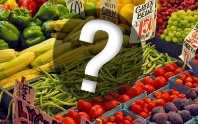 GMO 표시현황 실태조사 결과 및 업체 공개질의