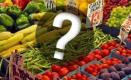 GMO 소비자 설문조사 결과