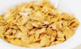 시리얼, 팝콘, 스위트콘 제품 GMO표시실태