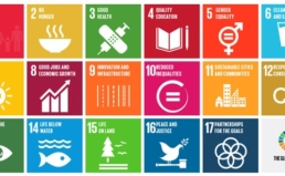 UN 지속가능발전목표(SDGs) 국내이행방안에 대한 의견서 제출