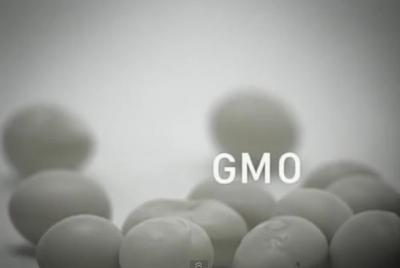 국회의 GMO표시제도 개선입법 통과 촉구
