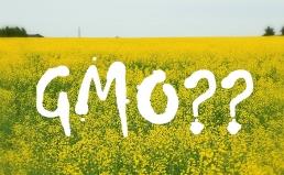 한국소비자원의 「GMO표시제도」개선 발표에 대한 입장