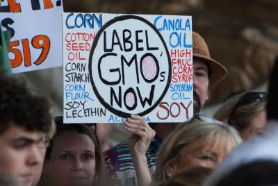식약처의 GMO표시 고시 개악 반대