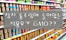 참치 통조림 내 식용유 GMO표시 실태조사 결과