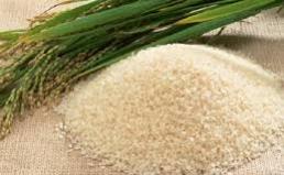 농수산식품 원산지 거짓표시 처벌강화 발표에 대한 입장