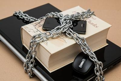 인터넷 임시조치 피해 심각