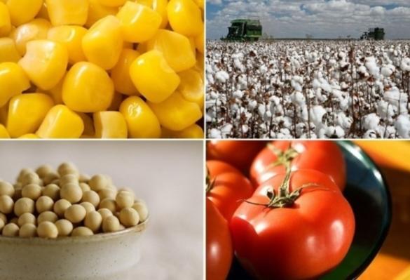 [김성훈 칼럼] 식품공급 시스템과 음식문화에 일대 혁신이 일어나야